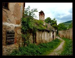 Old Street Of Lubocza by skarzynscy