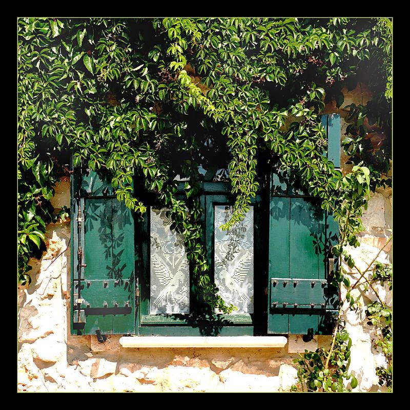 Behind Green Curtain by skarzynscy