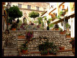 Flowers In The City - Taormina