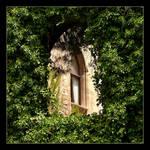Behind The Green Curtain - Palma - Mallorca