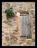 Is That A Door Or Window? by skarzynscy