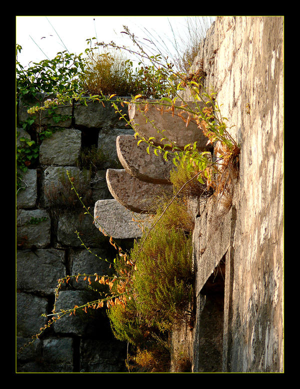 Old Stones And New Life by skarzynscy
