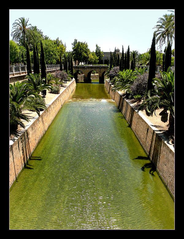 City, Plants And Water... Palma - Mallorca - 2 by skarzynscy