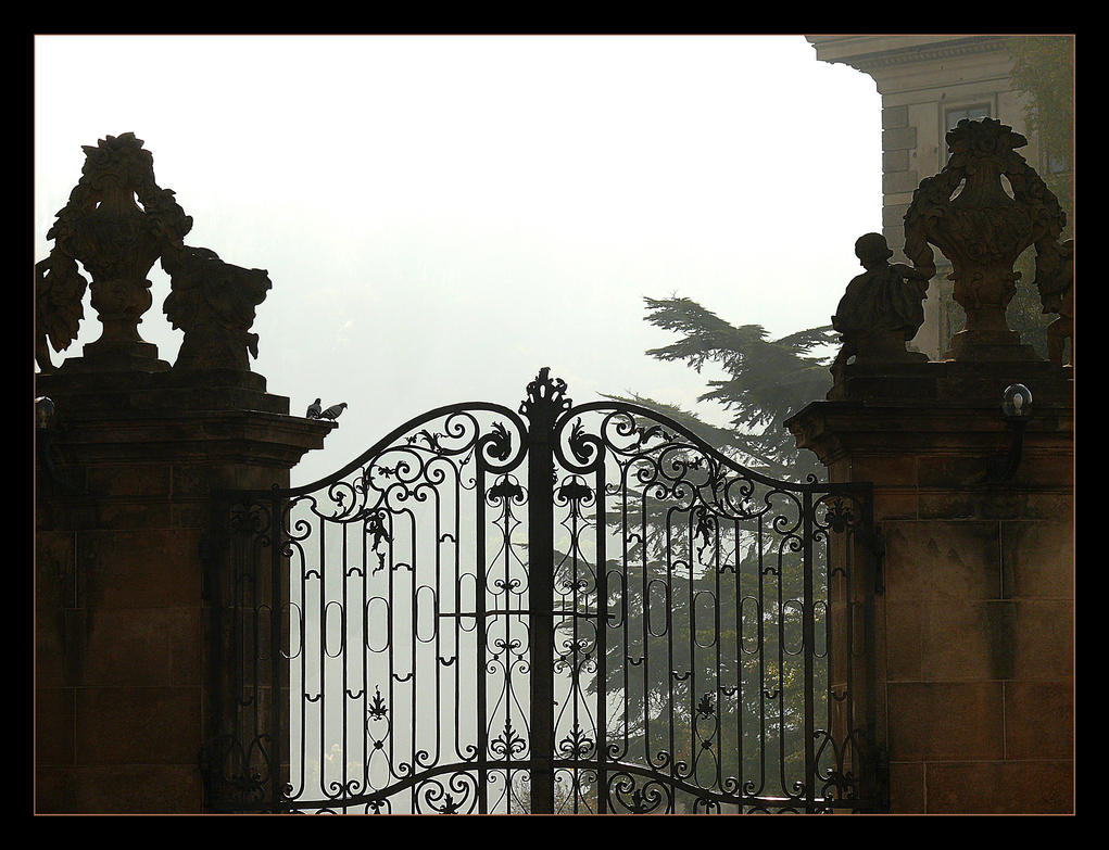 Missed Pictures - 26 (Fog. Behind The Closed Door) by skarzynscy
