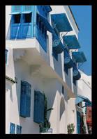 Blue And White... (Analog Photo) by skarzynscy