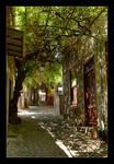 Under A Green Canopy by skarzynscy