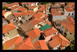 Red Roof Tiles And Plastic Green by skarzynscy