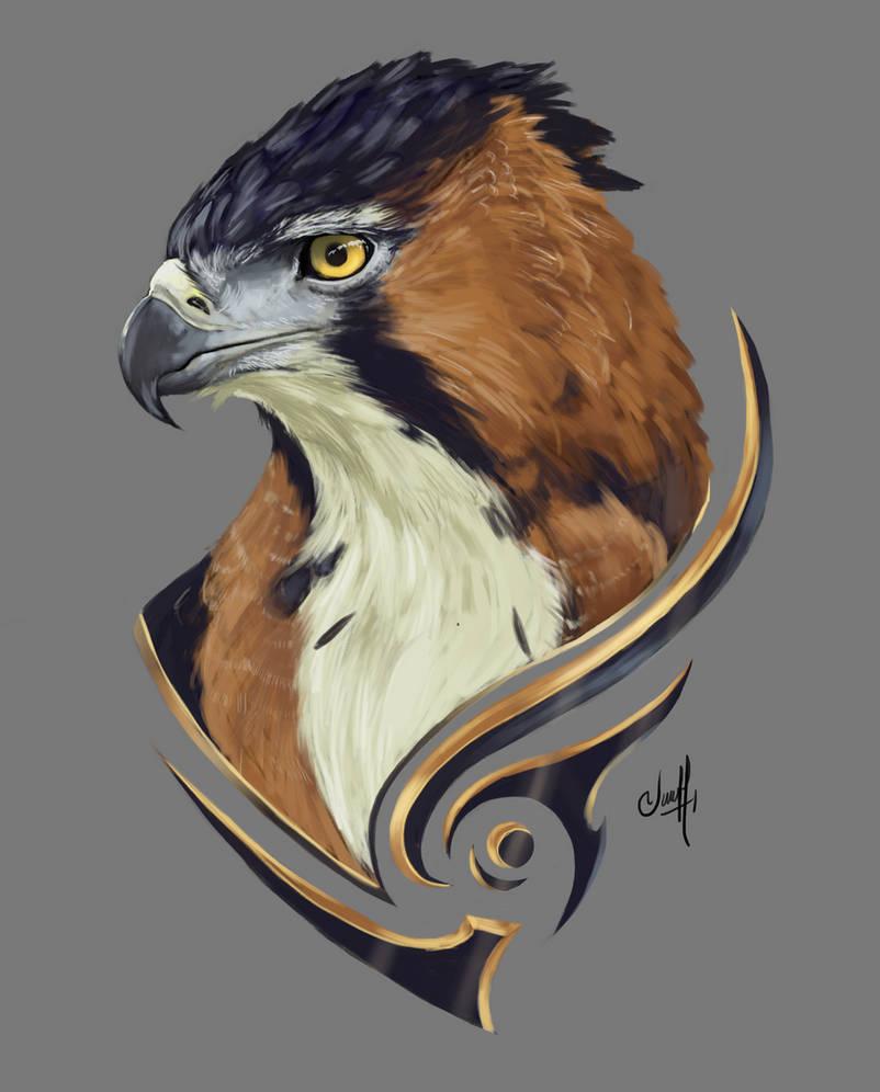 010# Ornate Hawk-Eagle