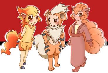 Pokemon Fire Pack by Willowbranwen