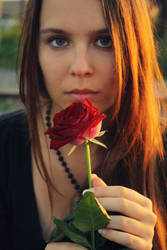 Rose by leani