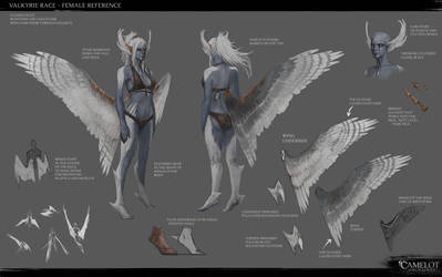 Valkyrie Race - Female Reference