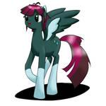 Raindancer  -  OC Pony