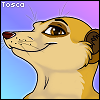 Meerkat Icon by Shema-the-lioness
