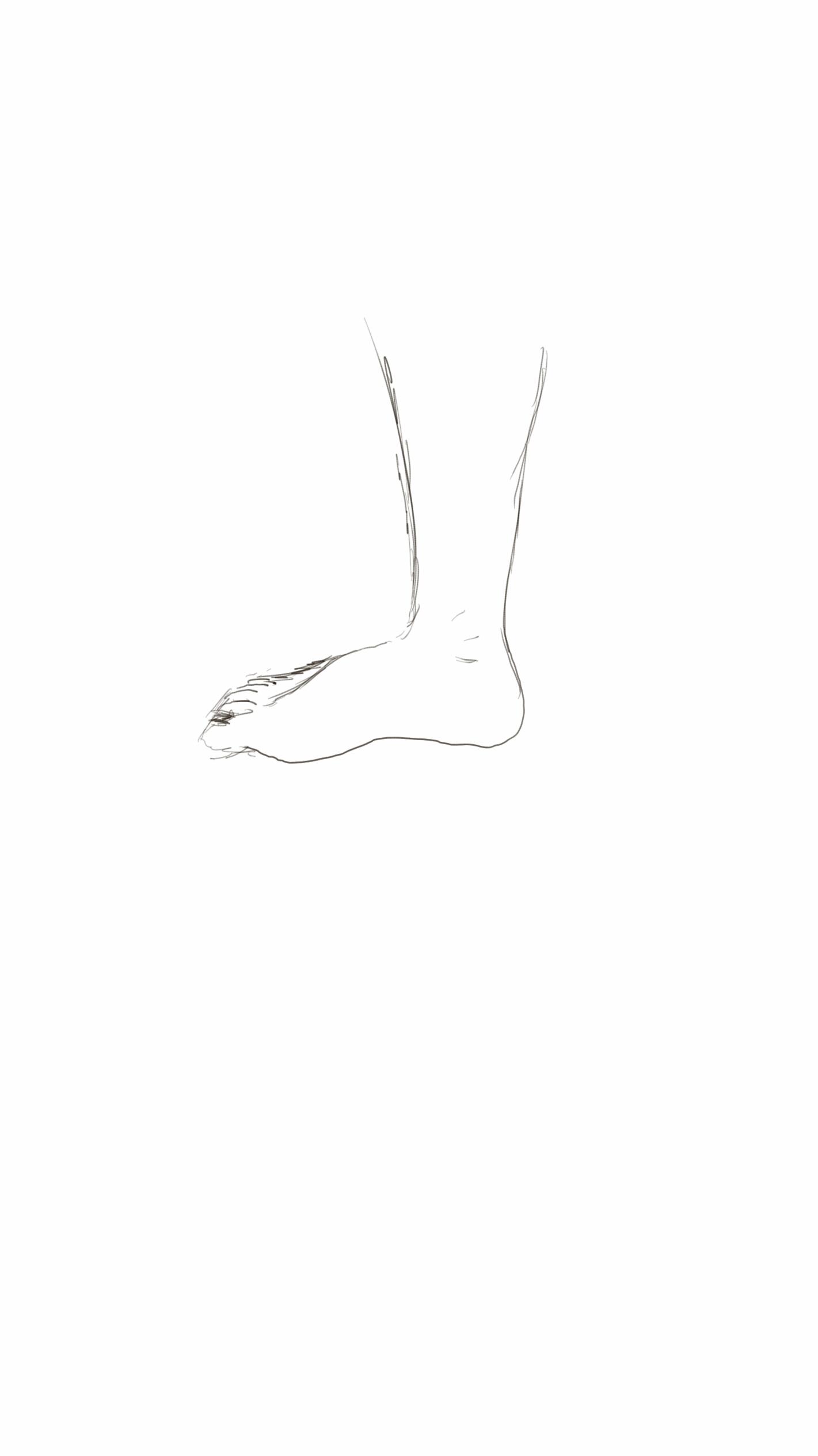 Samsung note 3  foot sketch1