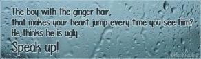 gingerboy Hankiebeer50