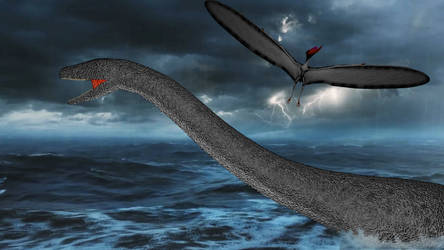Late Jurassic Sea Surface