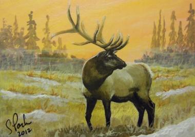 Elk 577 Second Llc ACEO Misty Morning Elk...