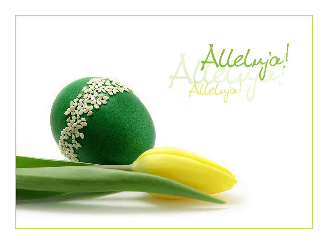 Easter Card by AnLesPL on DeviantArt – Easter Card