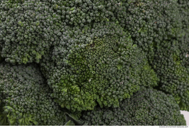 Vegetables-broccoli 640v640 (3) by HumanAnatomy4Artist