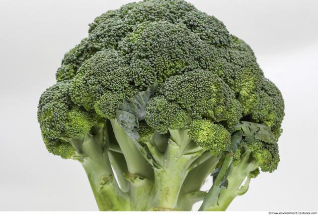 Vegetables-broccoli 640v640 (1) by HumanAnatomy4Artist