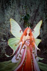 Elaine, moth fairy