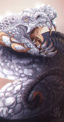 Diamond Dragon by DemonML