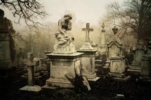 Morning Mourning I