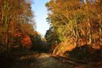 Autumn - Around the Bend