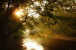 Autumn - Morning Glow