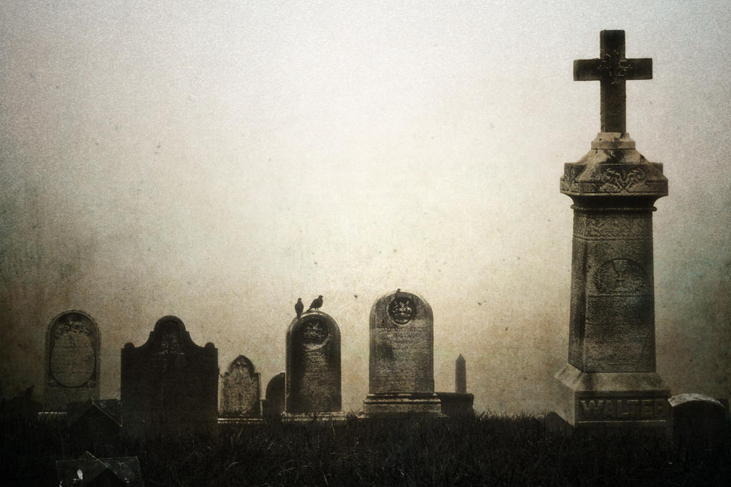 Morning Mourning VIII by touch-the-flame