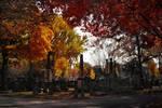 Autumn - Green Mount III