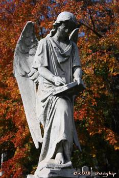 Autumn Angel I