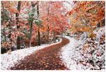 Two Seasons by BenHeine