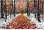 Two Seasons - 2 -