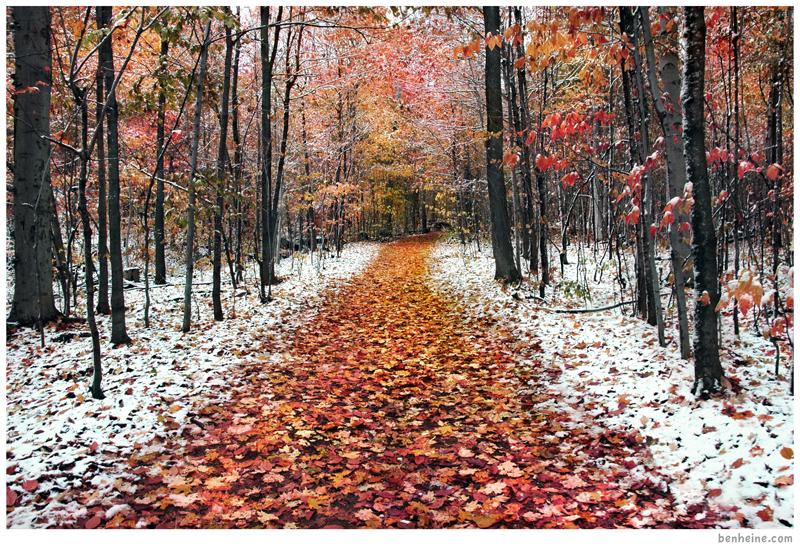 Two Seasons - 2 - by BenHeine