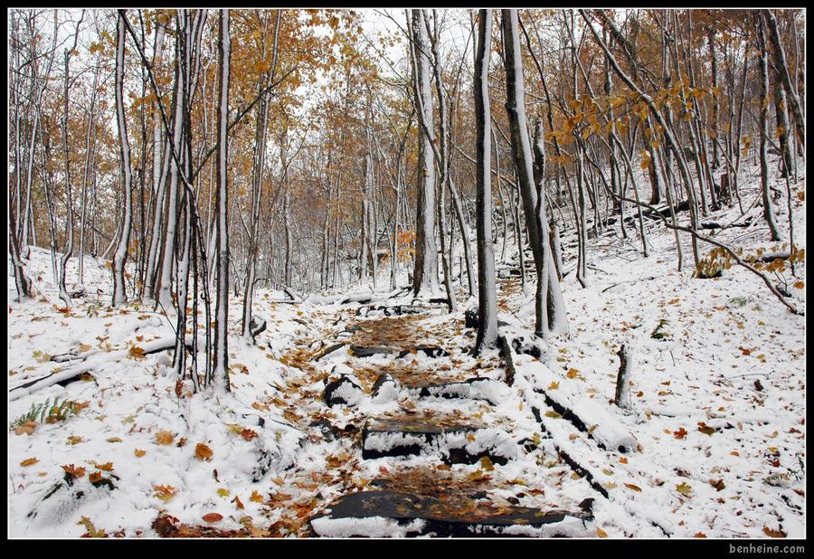 Two Seasons - 3 - by BenHeine