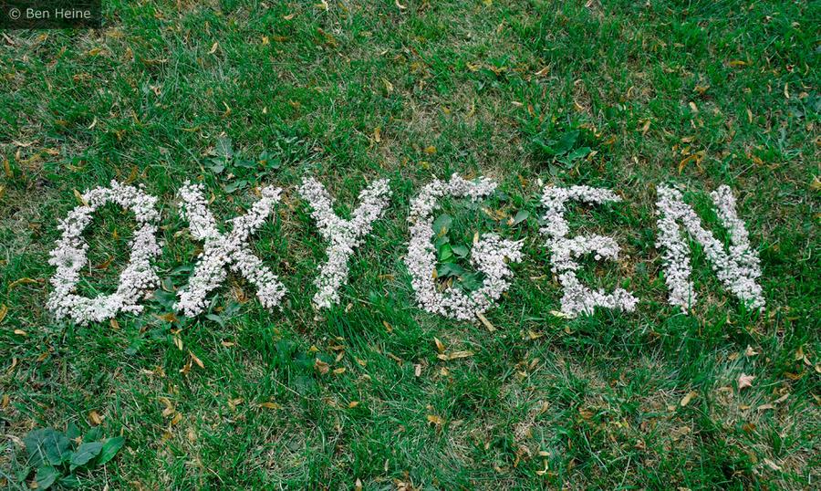 Oxygen by BenHeine