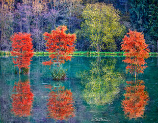 Autumn in Chevetogne by BenHeine