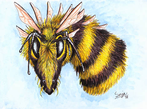 Bee Dragon