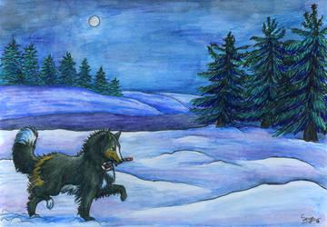 December Night by Senyadra