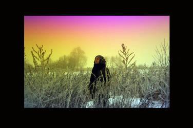 winter polychrome 1