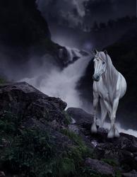 MustangHeart Commission by PhoenixAureus