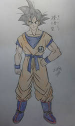 Style Study - Naohiro Shintani (Son Goku)