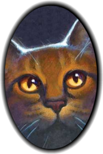 LucasClanCat's Profile Picture