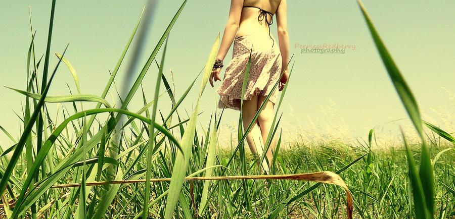 Hello summer. by PeerlessRedberry