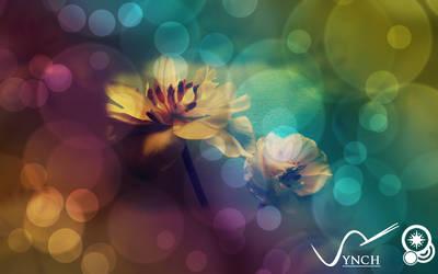 Flower Bubble Wallpaper by plus44maniac