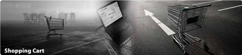shopping cart software India by skynetindia