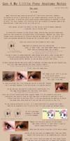 G4 MLP Anatomy Notes - Eyes