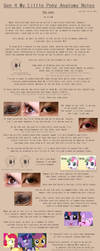 G4 MLP Anatomy Notes - Eyes by Pix3M