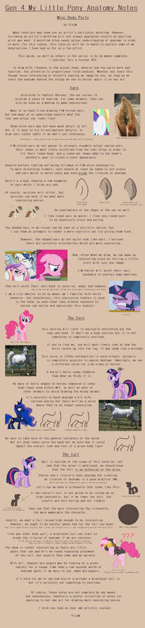 G4 MLP Anatomy Notes - Misc- Ear, Core, Tail
